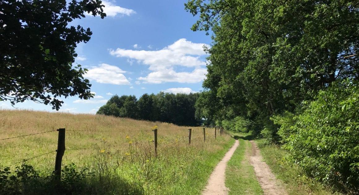 Hof van Saksen - running near the park