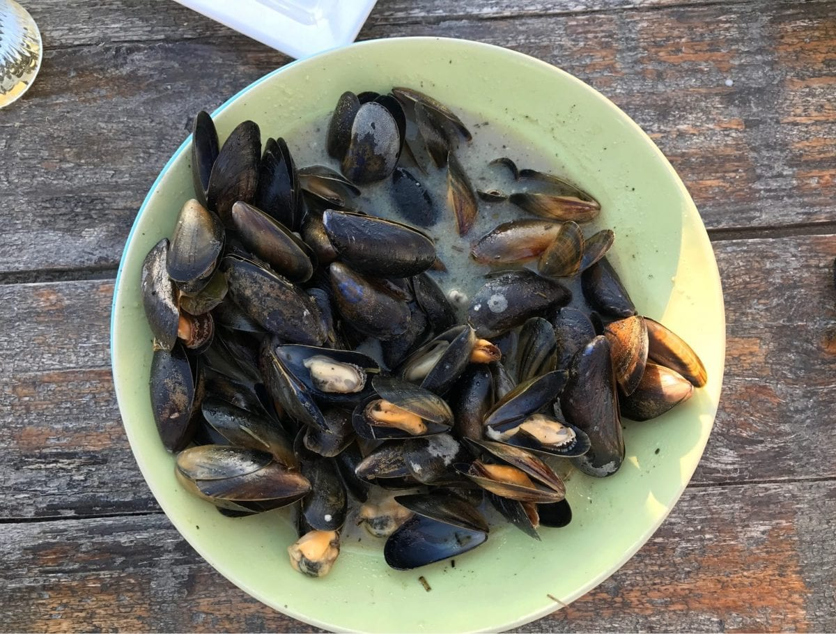Mussels in The Hague