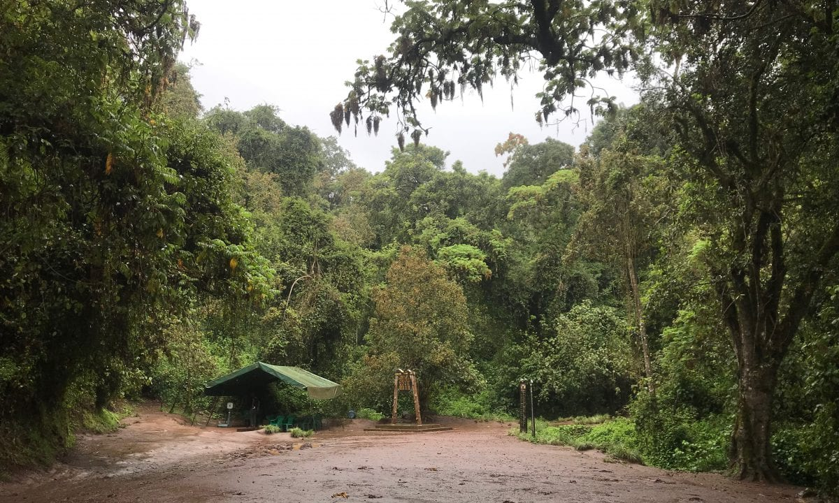 Trailhead for Kilimanjaro